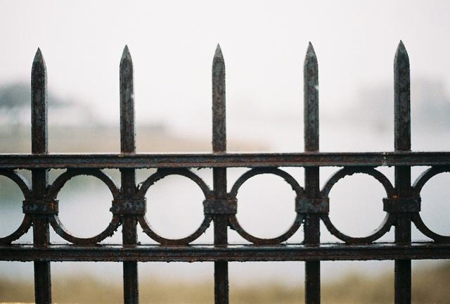 Fence around the lake