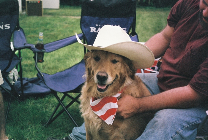 Riker, the happiest golden retriever you'll ever meet.