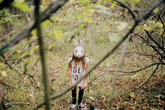 The rabbit.