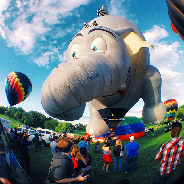 Ellicott City, MD -- May 16, 2014 -- The Preakness Celebration Balloon Festival took place this past Friday at the Turf Valley Country Club. Peanut the Elephant hovers gracefull over the crowd long enough for an iPhone snapshot. (Kaitlin Newman/Baltimore Sun)