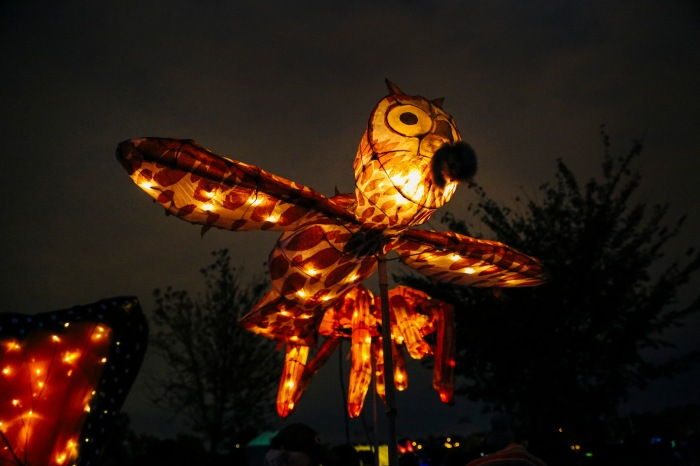 Baltimore, Md - October 24, 2015 - The Halloween Lantern Parade was held at Patterson Park this past weekend. (Kaitlin Newman for The Baltimore Sun)