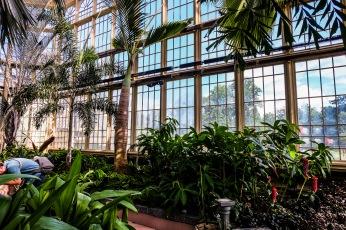 conservatory_24